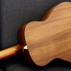 Veelah面單板旅行吉他