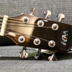 Win Guitars